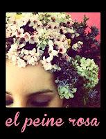 El Peine Rosa, Feria de la Comunión Barbastro
